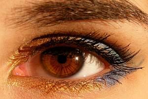 Abbildung: Auge