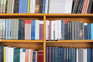 Abbildung: Bücherregal