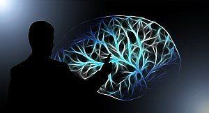 Grafik: Lernen und Gehirn