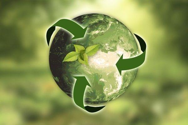 Artikelgrafik: Nachhaltigkeit