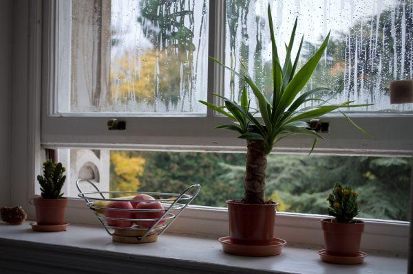 Bild: geöffneter Fensterspalt