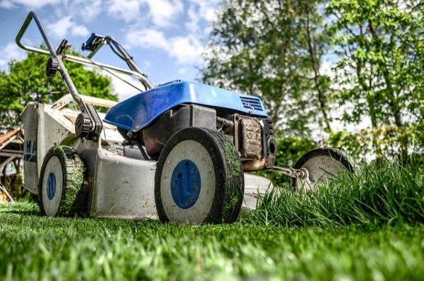 Bild: Rasenmäher im Garten